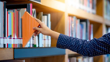 Male Right Hand Choosing And Picking Orange Book In Public Library. Pulling Off Selected Textbook. Education Research And Self Learning In University Life Concepts