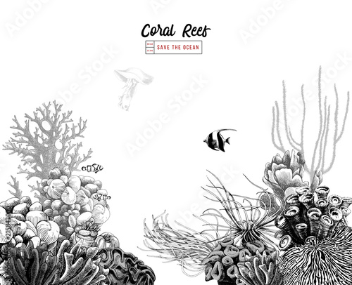 Fotografia Hand drawn coral reef with tropical fishes