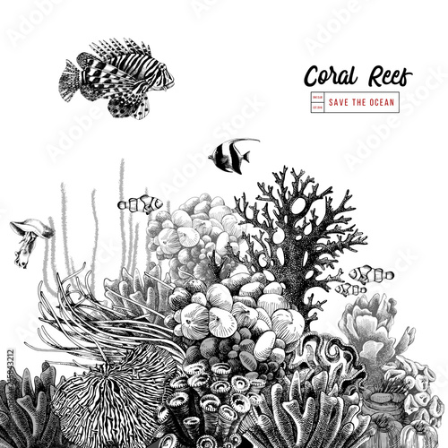 Canvas Print Hand drawn coral reef with tropical fishes