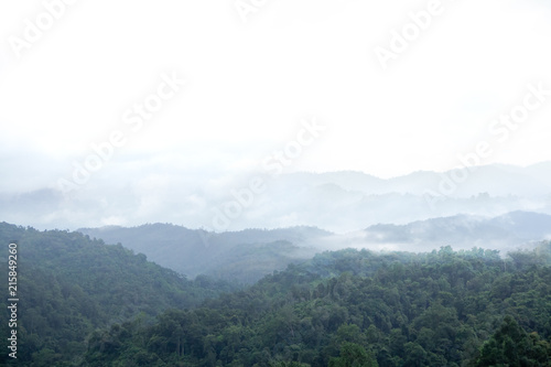 Fotobehang Wit Landscape mountain view,Fog and Clouds are rolling through after the rain in the Mountains National Park in North of thailand. Natural rain forest, Fog step between mountain.