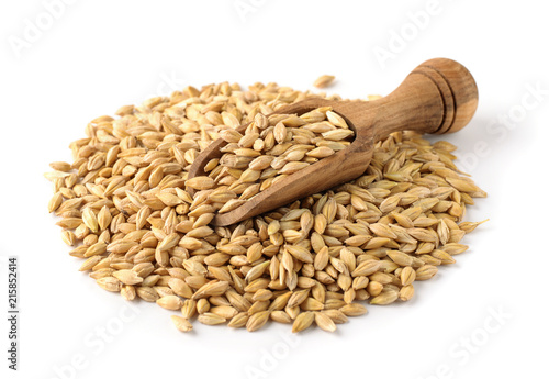 Tableau sur Toile Dry barley seeds and wooden scoop