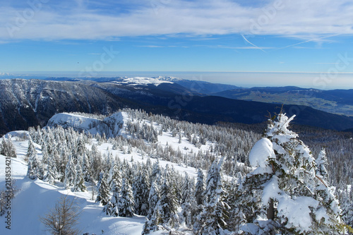 Snowy panorama from Mount Verena to Asiago, Vicenza - Italy Wallpaper Mural