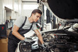 At work: a car mechanic is looking for bugs in an engine