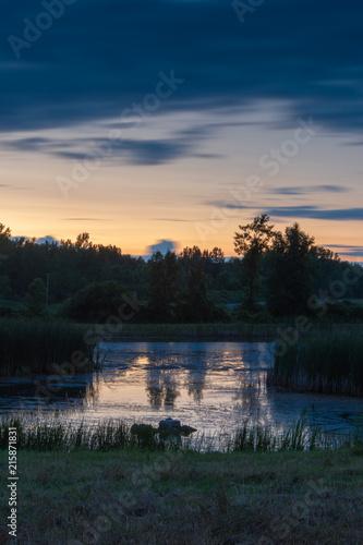 Fotografie, Obraz  Pond at Night with Orange Sunset