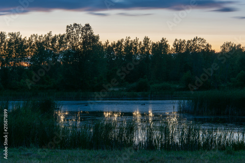 Fotografie, Obraz  Pond During Sunset with Canadian Geese