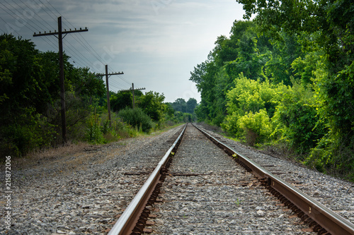 Fotografie, Obraz  Railroad Tracks with Light Green Foliage and Power Lines