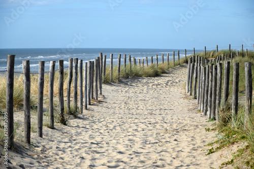 Spoed Foto op Canvas Noordzee Weg am Meer