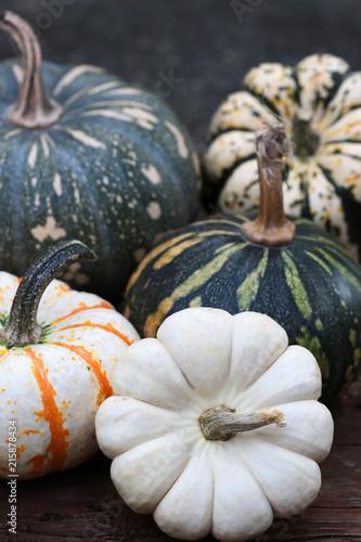 rustykalna-kolekcja-jesien-squash-i-dynie