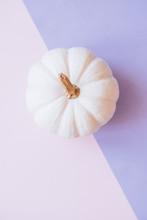 White Pumpkin On Pink Background