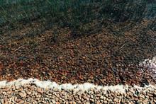 Lake Shore Pebbles And Surf