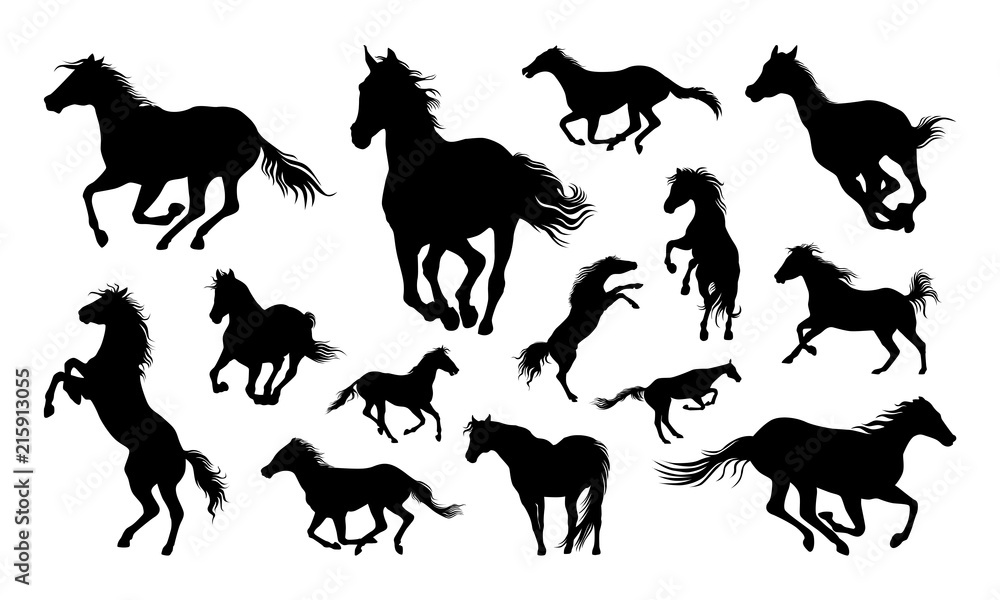 Fototapety, obrazy: Horses silhouette set vector illustration, Collection of Horse silhouette