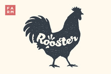 Rooster. Lettering, Typography. Animal Silhoutte Rooster, Hen And Lettering Rooster. Creative Graphic Design For Butcher Shop, Farmer Market. Vintage Poster For Meat Related Theme. Vector Illustration