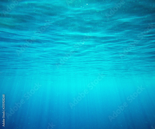 Photo Stands Fractal waves Tranquil underwater scene with copy space