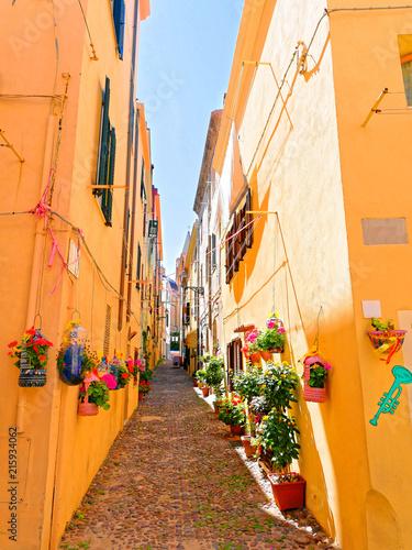 Piękna, wąska uliczka udekorowana kwiatami w Alghero. Sardynia, Włochy.