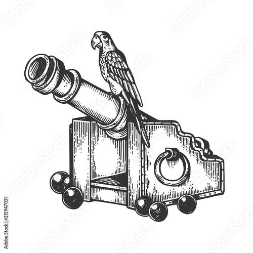 Carta da parati Parrot on cannon engraving vector illustration