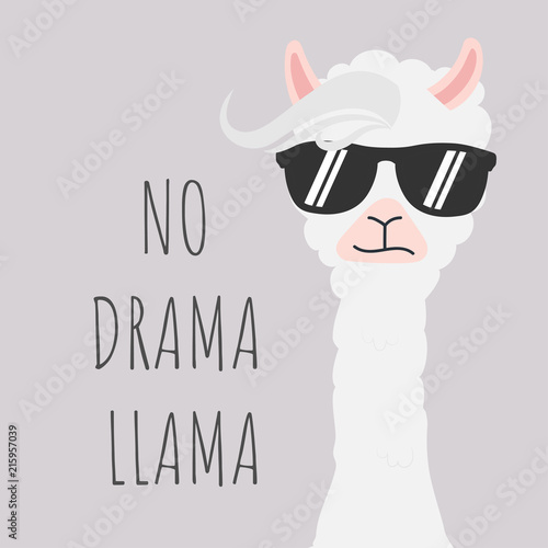 Obraz Cute Llama design with no drama motivational quote. - fototapety do salonu