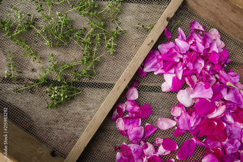 High angle view of rose petals and herbs in metallic wooden frame