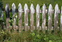 Grungy Old Weathered White Picket Fence Wallpaper Background