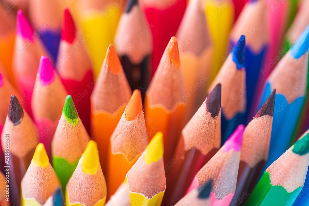 Fototapety, obrazy: Education or back to school Concept. Close up macro shot of color pencil pile pencil nibs on white background.