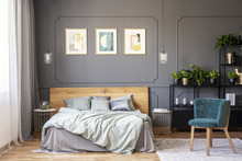 Double Bed With Grey Bedding And Wooden Headboard Standing In Dark Bedroom Interior With Window With Drapes, Gold Posters On The Wall With Wainscoting And Fresh Plants Placed On Metal Rack