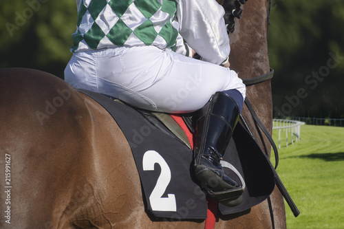 Photo jockey on a brown horse from behind at a gallop race on a grass track