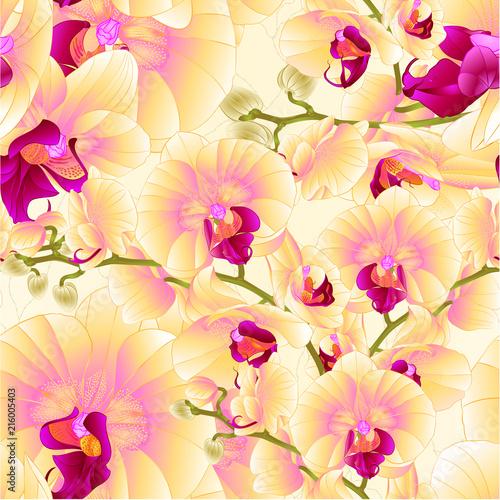 bezszwowa-tekstura-wywodzi-sie-orchidei-kolor-zolty-kwitnie-phalaenopsis-rosliny-tropikalnego-rocznika-wektorowa-botaniczna