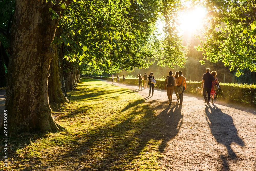 Fototapety, obrazy: Spaziergänger im Park in der Abendsonne (2)