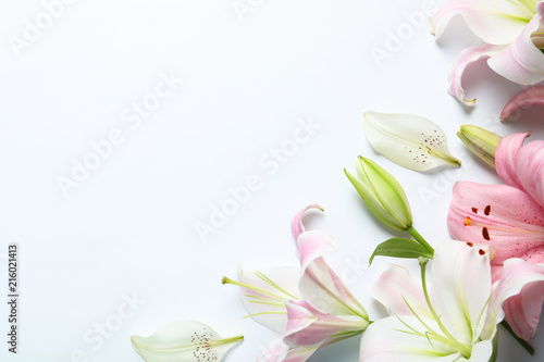 Fotografia  Flat lay composition with beautiful blooming lily flowers on white background