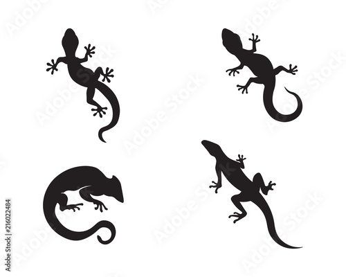 Lizard vector, design, animal, and reptile, gecko Poster Mural XXL