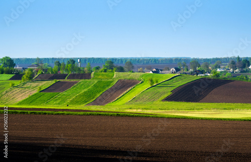 Foto op Aluminium Chocoladebruin Beautiful summer landscape of Ukrainian Polissya. A hilly field. Ukraine, European country. The beauty of Ukrainian nature attracts tourists from all over the world.
