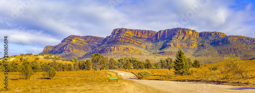 Photo sur Toile Miel Panoramic landscape of Flinders Ranges in Ikara-Flinders National Park, South Australia