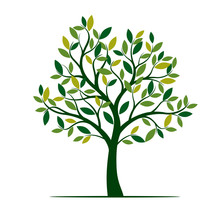 Green Spring Tree. Vector Illu...