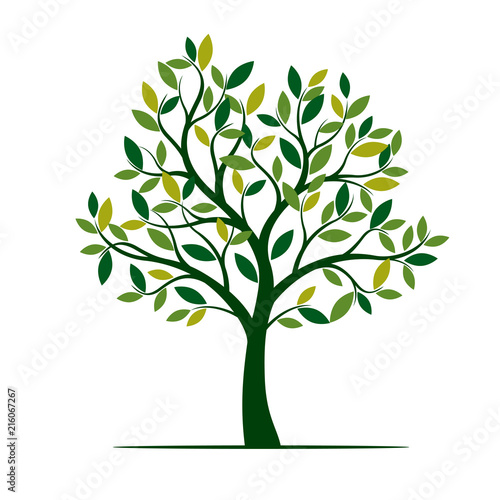 Green Spring Tree. Vector Illustration. Wall mural