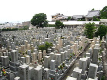 Japanese Grave Yard In Kyoto, ...