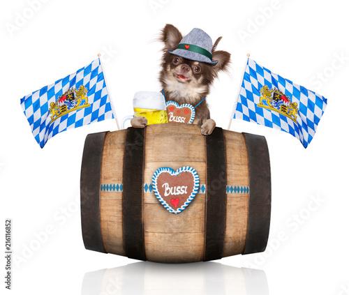 Keuken foto achterwand Crazy dog bavarian beer barrel