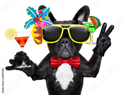Keuken foto achterwand Crazy dog drunk cocktail party dog