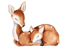 Baby Deer Watercolor Summer, A...