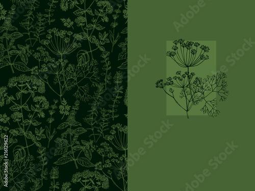 Fototapeta  Elegant classic herbal seamless pattern