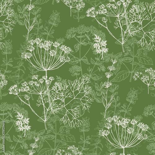 Valokuvatapetti Elegant classic herbal seamless pattern