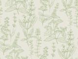 Ręcznie rysowane szkic ziołowy wzór dla projektowania powierzchni - 216129865