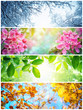 Leinwandbild Motiv Four seasons. A pictures that shows four different pictures representing the four seasons: winter, spring, summer and autumn.