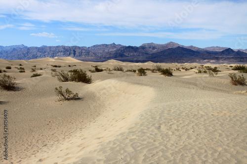 Fotografering  Dune del deserto