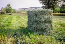 Small Square Alfalfa Hay Bales...