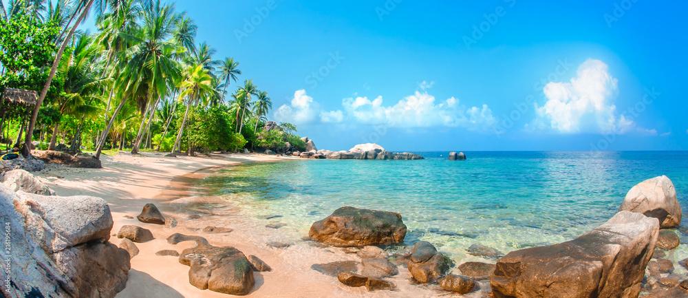 Fototapeta Beautiful tropical beach at exotic island with palm trees