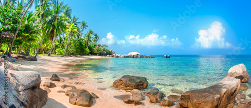 Beautiful tropical beach at exotic island with palm trees - 216195684