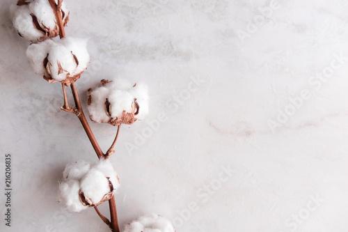 bawelniany-kwiat-na-bialym-marmurowym-tle