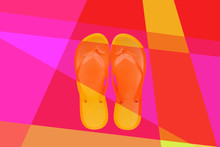 Flip Flops, Modern Colorful Fl...