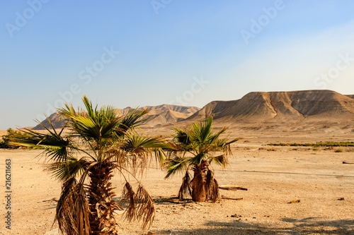Photo Israel desert landscape.