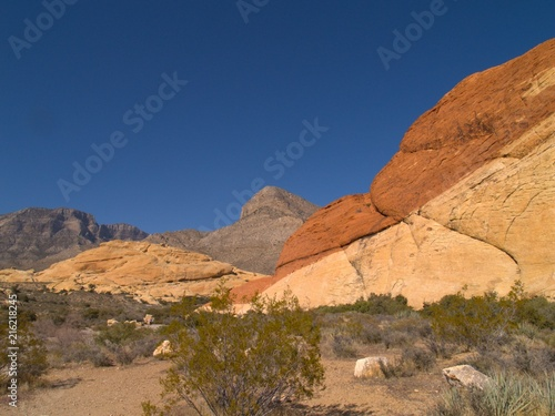 Foto op Plexiglas Nachtblauw Neveda Desert