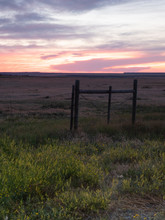 Yellow Wildflowers In A Rural Field With A Wood Fence In The Foreground And A Brilliant Orange And Blue Sunset Above.